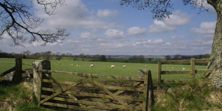 Photo of Northumberland