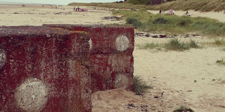 Dice at Bamburgh Castle beach