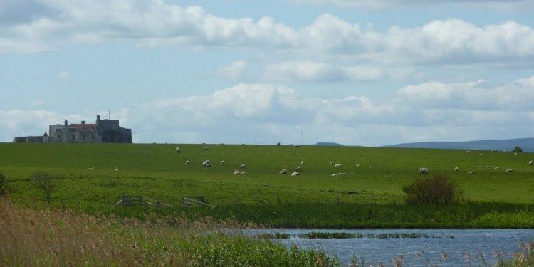 Panoramio Photo Of Lindisfarne