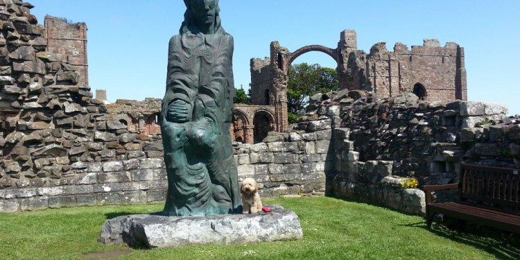 Zuki visits Lindisfarne