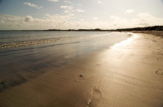 Footprints in sand at Beadnell Bay - Photo by title=