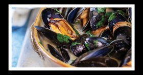 mussels-front-page-Small