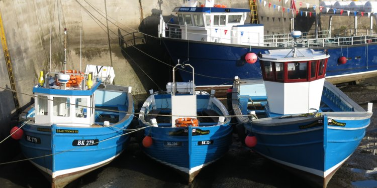 Seahouses history