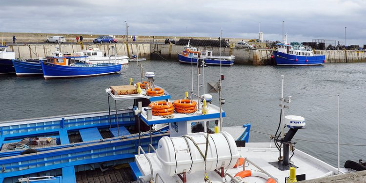 Best places Seahouses Northumberland