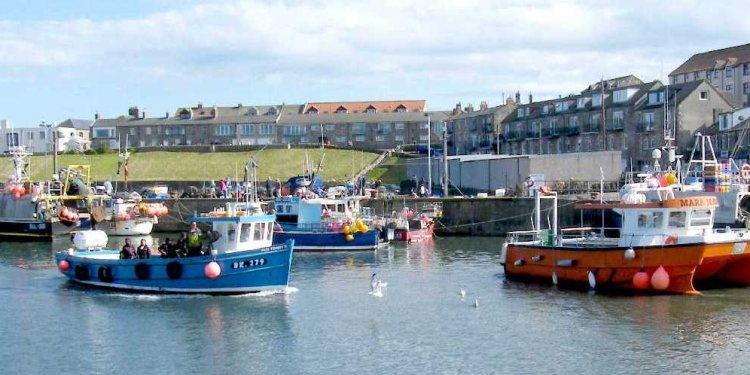Seahouses website
