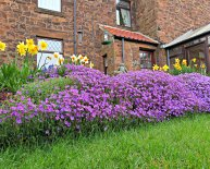Bed and Breakfast Seahouses Northumberland