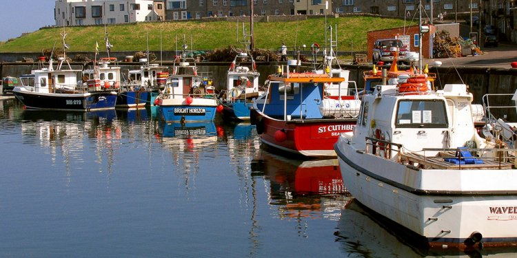 Things to do in Seahouses